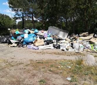 Działkowcom z Bydgoszczy cuchną śmieci – zawiadamiają sanepid