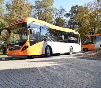 Kursy autobusów miejskiej komunikacji z Krosna do uzdrowisk? Jest taki pomysł