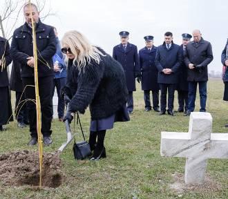Światowy Dzień Pamięci Ofiar Wypadków Drogowych [ZDJĘCIA]