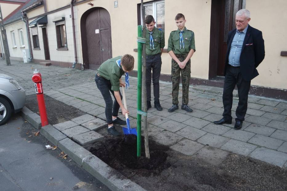 Dzięki dofinansowaniu kolejne drzewka miododajne pojawią się m.in. w gminie Chocz