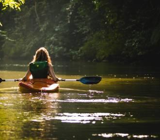 Najlepsze trasy kajakowe na Pomorzu. Którą rzeką warto spłynąć?