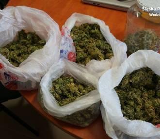 Znaleźli marihuanę i haszysz. W trójkę produkowali i przemycali narkotyki