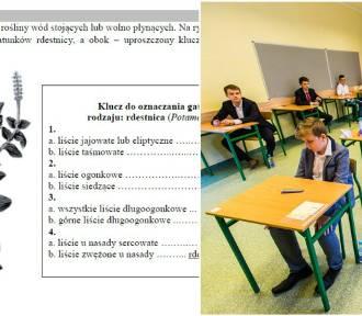Egzamin gimnazjalny 2018 z CKE - przyroda [arkusze i odpowiedzi]