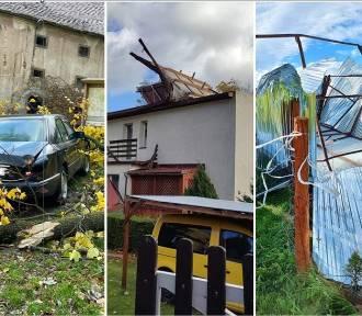 300 interwencji strażaków w Wałbrzychu, Świdnicy i okolicach. Drzewa spadły na ludzi