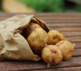 Poznaj 9 nietypowych zastosowań ziemniaka w domu