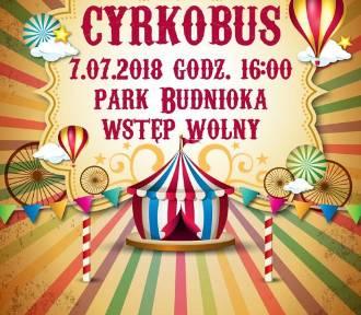 Występy cyrkowe w Parku Budnioka. W ramach Inwazji Sztukmistrzów