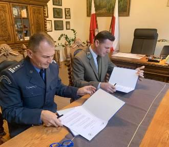 Więźniowie będą pracować w lasach. Podpisano już umowę o współpracy