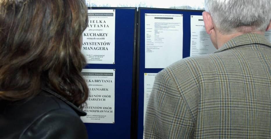 Oferty pracy w Toruniu i okolicy