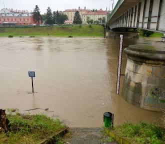 Wysoki poziom wody na Sanie. Monitoring powodziowy: gdzie wylał San