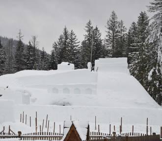 Zakopane. Pod Wielką Krokwią budują śnieżny zamek i labirynt [ZDJĘCIA]