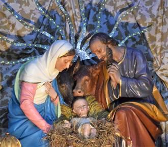 Szopka Bożonarodzeniowa w Rybniku w Bazylice. Jak Wam się podoba? [ZDJĘCIA]