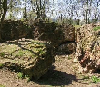 W tych miejscach naszego regionu po zamkach zachowały się jedynie niewielkie ruiny