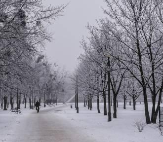 Czy w święta spadnie śnieg? Zobacz prognozę pogody