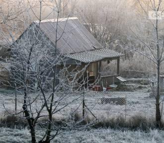 Czy w tym roku święta będą białe, czy śnieg zobaczymy tylko na starych zdjęciach?