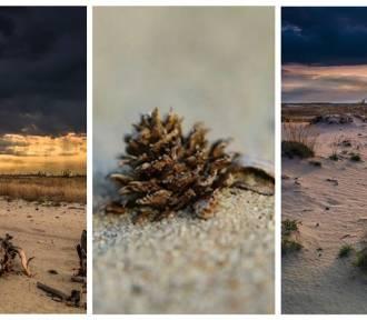 Pustynia Błędowska jest niezwykła - zobaczcie te zdjęcia!