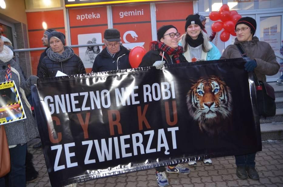 Nie chcą cyrków ze zwierzątami w Gnieźnie