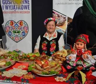 Jak rozdysponowano pół miliona przekazane wojewodzie przez premiera RP na dzień sołtysa w Łowiczu