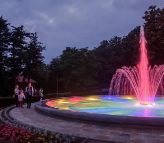 Nowa atrakcja w Parku Sanguszków zachwyca paletą barw [ZDJĘCIA]