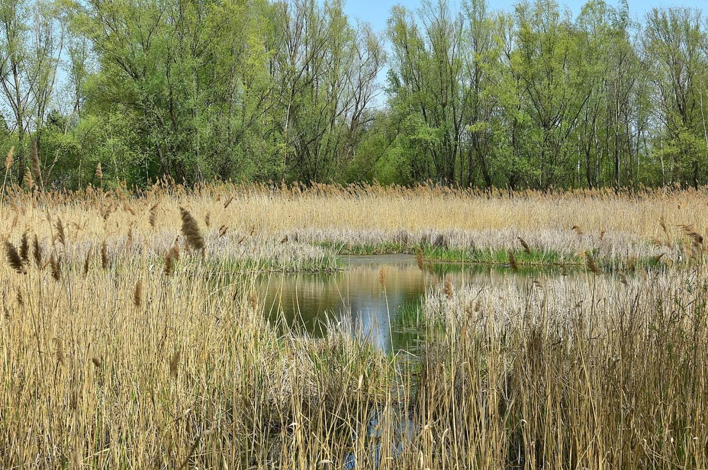 Jezioro Zabłockiego