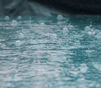 To koniec zimy? Nad Wielkopolskę zmierzają opady deszczu. Będzie ślisko!