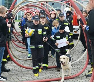 Strażacy grają dla Maksia! Turniej strażaków z licznymi atrakcjami już w niedzielę! ZDJĘCIA