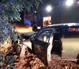 Wypadek w Wiśniówce. Samochód uderzył w drzewo
