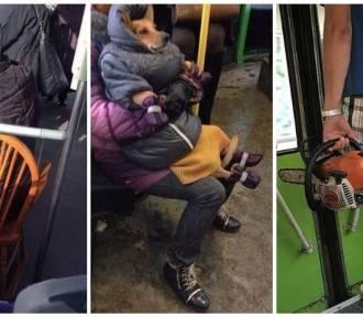 """Co można zobaczyć w komunikacji miejskiej? Dodatkowe krzesło, """"zmęczone siatki"""" i... piłę. Tego"""