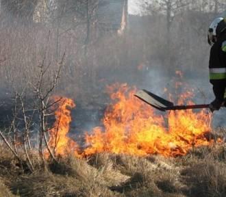 Policja ostrzega - wypalanie traw jest przestępstwem i grozi karą do 10 lat więzienia