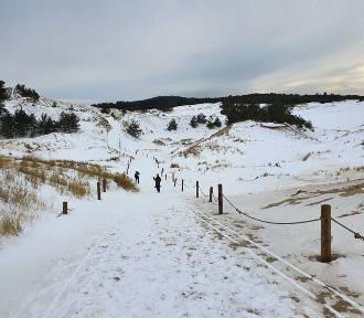 Zimowy spacer po Słowińskim Parku Narodowym [ZDJĘCIA, WIDEO]