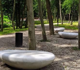Bulwary nad rzeką w Lublińcu zachwycają [ZDJĘCIA]. Mieszkańcy korzystają z uroków tego miejsca
