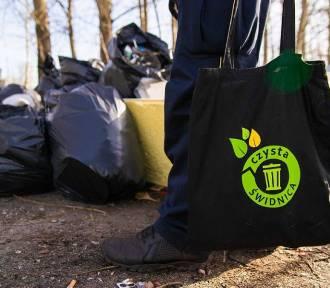 Bezdomni ze świdnickiego schroniska posprzątali miasto (ZDJĘCIA)
