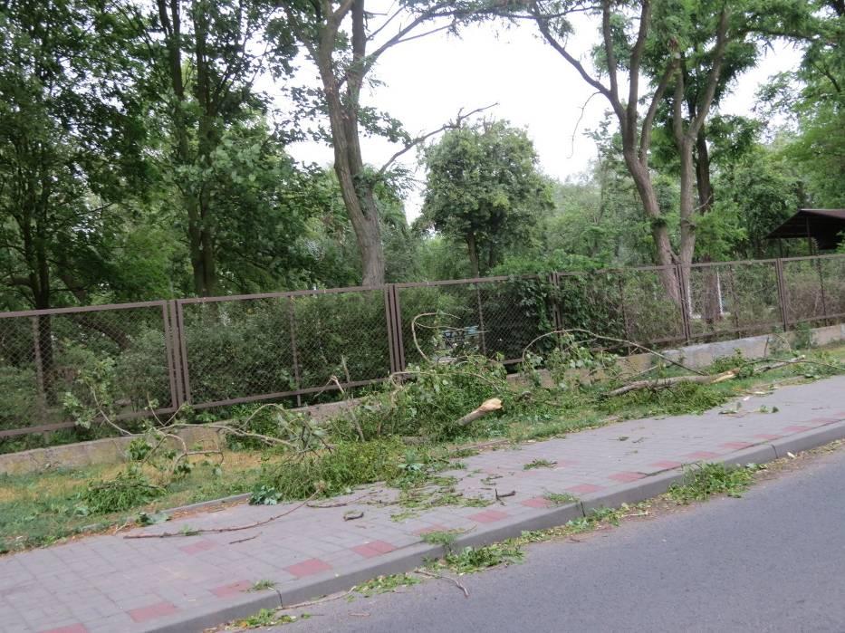 Wichura W Ciechocinku Połamane Drzewa Wiele Konarów Na Ulicach
