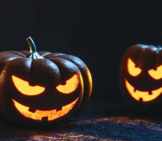 Strach się bać! Co wiesz o klasycznych horrorach? QUIZ