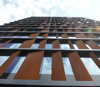 Łódź widziana z okien biur w Bramie Miasta