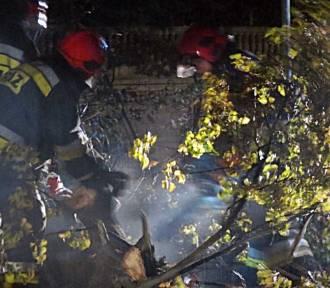 Nawałnica nad powiatem wągrowieckim. Połamane drzewa, zniszczone budynki...  [GALERIA ZDJĘĆ]