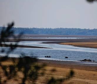Wyjątkowo niski poziom wody w zbiorniku Jeziorsko (zdjęcia)