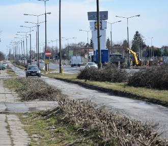 Remont DK12 rozpoczęty, drzewa i krzewy idą pod topór
