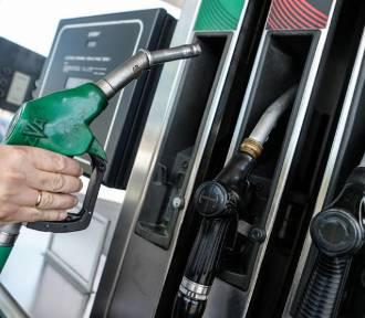 Ceny paliw w powiecie lubelskim. Sprawdź, ile zapłacisz na stacjach