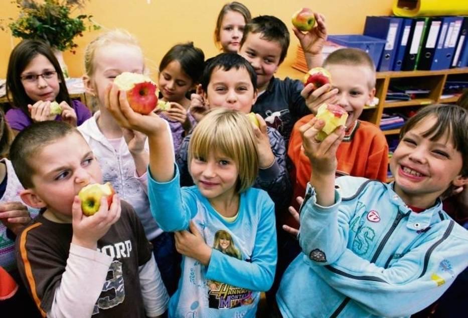 Pierwsze półrocze programu spodobało się dyrektorom szkół – od lutego liczba placówek w nim uczestniczących wzrosła