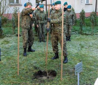 Strzelcy posadzili dąb im. plut. Stefana Karaszewskiego (foto)