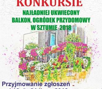 Konkurs na najbardziej ukwiecony ogródek i balkon - do końca lipca można składać zgłoszenia