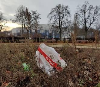 Antywizytówki Gdyni. W Parku Rady Europy dużo śmieci ZDJĘCIA
