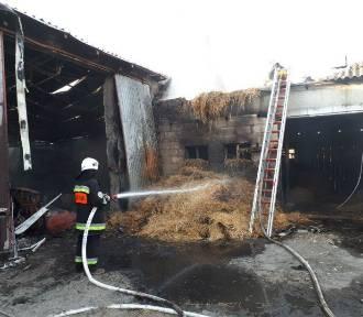 Pożar w powiecie radziejowskim. 9 zastępów straży pożarnej w akcji