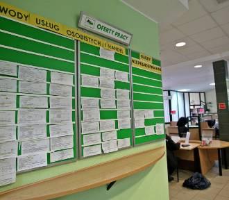 Oferty pracy w Kujawsko-Pomorskiem. Tu się zarabia więcej niż 5 tys. złotych brutto