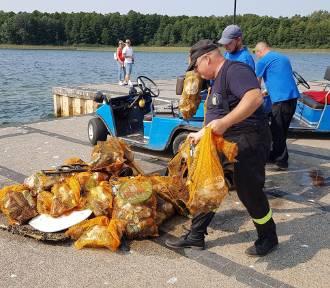 SKORZĘCIN: Takie smaczki na koniec sezonu - sprzątanie dna jeziora Niedzięgiel