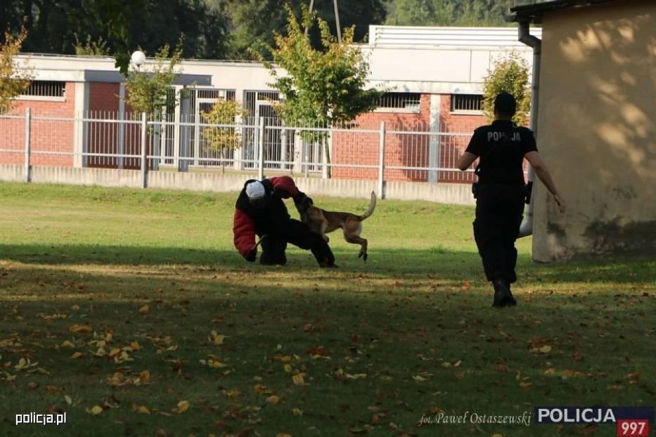 Kaliska policjantka sier. szt. Patrycja Wojtas na najwyższym podium XVIII Kynologicznych Mistrzostw Policji