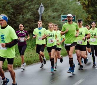 Bieg 5 mil po gminie Zduńska Wola. Ruszyły zapisy
