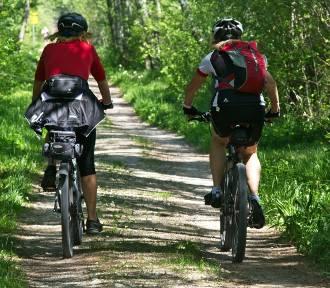 Co nas denerwuje u rowerzystów? Oleśniczanie wskazali kilka problemów!