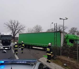 Zderzenie dwóch ciężarówek na trasie krajowej nr 92 [ZDJĘCIA]