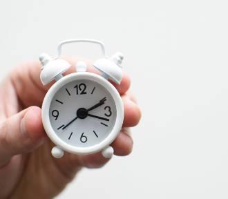 Ile czasu potrzebujemy na znalezienie pracy? Rekordziści kilka godzin
